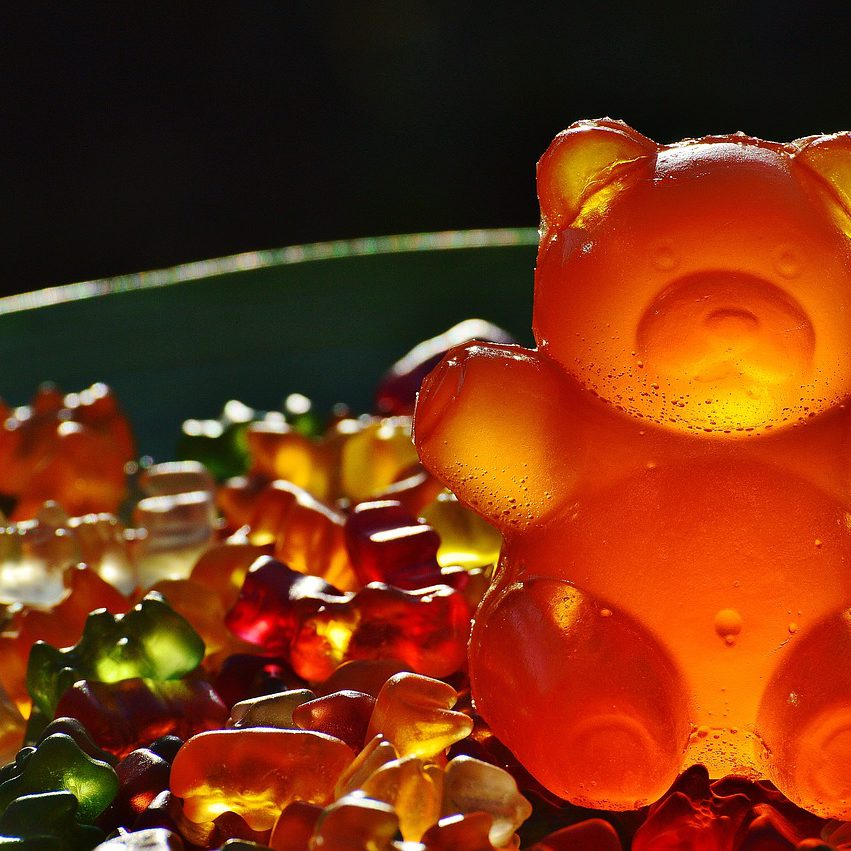 Haribo-ours